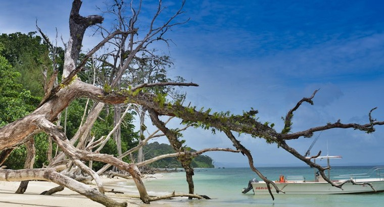 Cruise on the Sapphier waters Port Blair